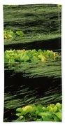 Grasses And Lilies In Beaver Pond Beach Towel