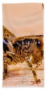 Grasshopper Beach Towel
