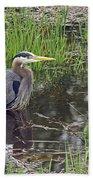 Great Blue Heron At Deboville Slough 2 Beach Towel
