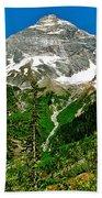 Great Glacier Trail In Glacier Np-british Columbia Beach Towel