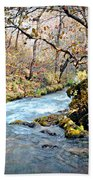 Greer Spring  Beach Towel