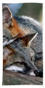Grey Foxes Beach Towel