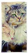 Gutter Kitties Seven Beach Towel
