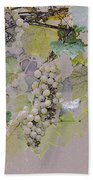 Hanging Thompson Grapes Sultana Beach Towel