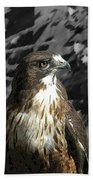 Hawk Of Prey Beach Towel
