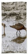 Hudsonian Godwit Beach Towel