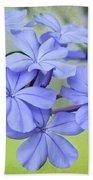 I Love Blue Flowers Beach Towel