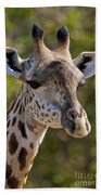 I'm All Ears - Giraffe Beach Towel