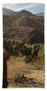Indian Canyons Beach Towel