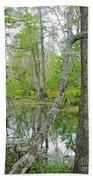 Jean Lafitte Swamp Beach Towel