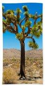 Joshua Tree 28 Beach Towel