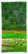Jungle Homestead Beach Towel