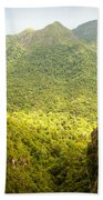 Jungle Landscape Beach Towel