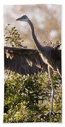 Juvenile Blue Heron Beach Towel