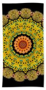 Kaleidoscope Ernst Haeckl Sea Life Series Triptych Beach Towel