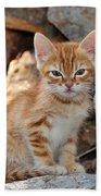 Kitten In Hydra Island Beach Towel