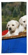 Labrador Retriever Puppies Beach Towel