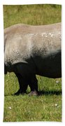 Lake Nakuru White Rhinoceros Beach Towel
