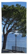 Lakeside With Trees Beach Towel