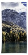 Larch Pine Reflections Beach Towel