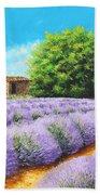Lavender Lines Beach Towel