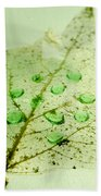 Leaf With Green Drops Beach Towel