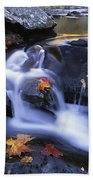 Leaves In Little River Great Smoky Beach Towel