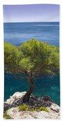 Lone Pine Tree Beach Towel