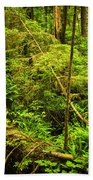 Lush Temperate Rainforest Beach Towel