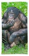 Male Bonobo Beach Towel