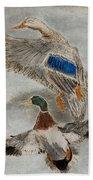 Mallard Pair Beach Towel