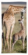 Masai Giraffe Giraffa Camelopardalis Beach Towel