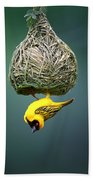 Masked Weaver At Nest Beach Towel