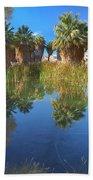 Mccallum Pond - Coachella Valley  Beach Towel