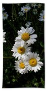 Mountain Daisies Beach Towel
