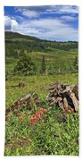 Mountain Meadow  Beach Towel
