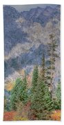 Mountains And Trees Beach Towel