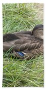 Ms Mallard Beach Towel