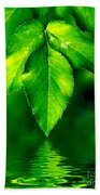 Natural Leaves Background Beach Towel