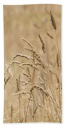 Nature Landscape Beach Towel