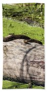 Northern Water Snake Beach Towel