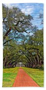 Oak Alley 3 Beach Towel