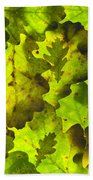 Oak Leaf Background Beach Towel