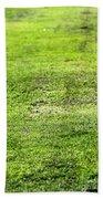 Old Green Grass Beach Towel