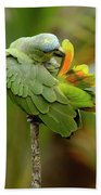 Orange-winged Parrot Amazona Amazonica Beach Towel