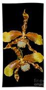 Orchid Series 104 Beach Towel