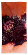 Oriental Poppy Beach Towel