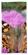Painted Lady Butterfly Up Close Beach Towel