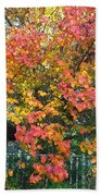 Pallette Of Fall Colors Beach Towel