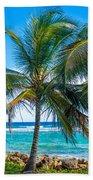 Palm Trees And Sea Beach Towel